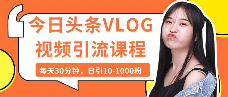 今日头条VLOG视频引流课程视频