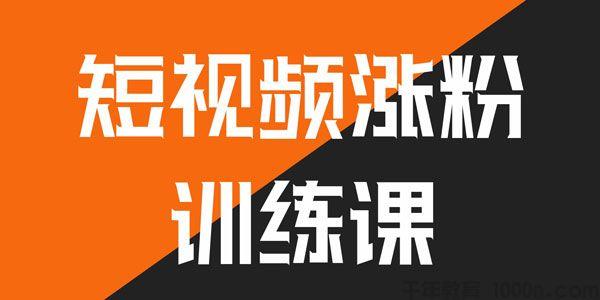 村西边老王 鹤老师-抖音短视频涨粉营销训练营
