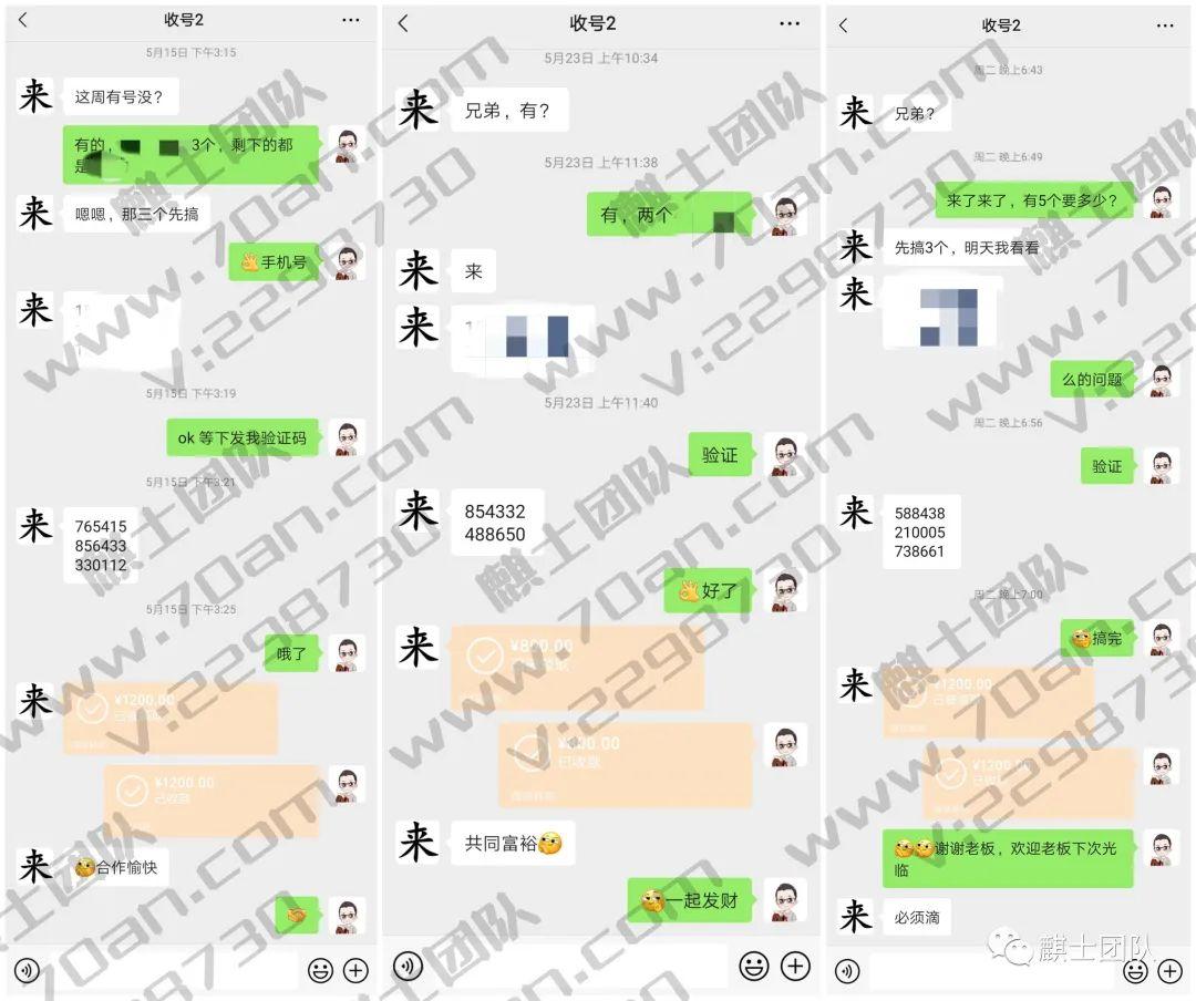 麒士团队:快速赚钱小项目2.02.jpg