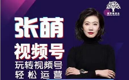 张萌萌姐视频号实战训练营课程视频.jpg