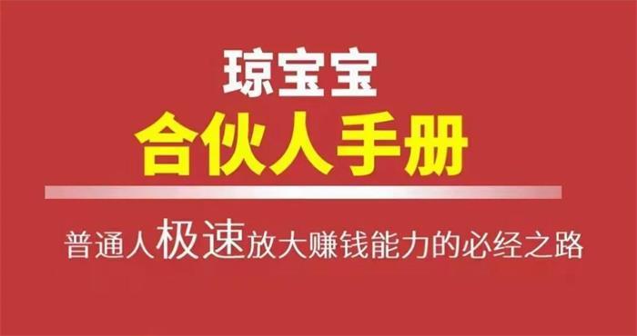 琼宝宝《合伙人手册PDF电子版》